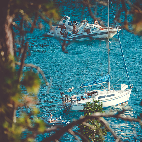 Find your crew and sailing adventure